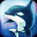 虎鲸养成游戏3D