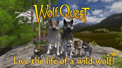 野狼的生活