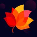 秋叶直播,一款非常有温度的社交软件
